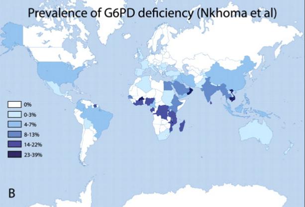 La prévalence mondiale du déficit en G6PD