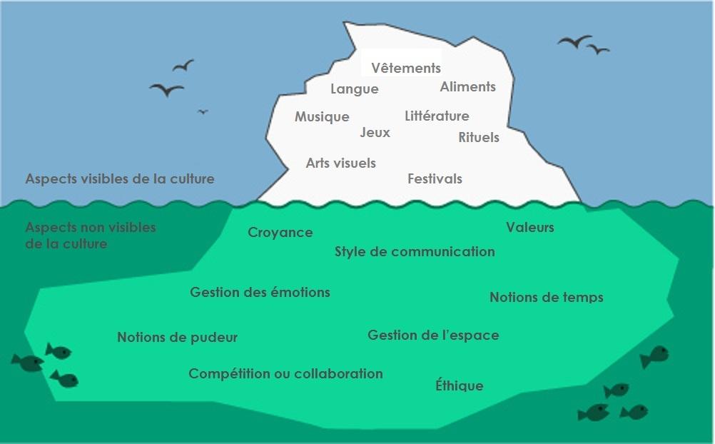 Traduction de la diapositive 6, Introduction to clinical cultural competence